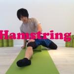 冷え性や膝の痛み予防!腿裏・ハムストリングスの筋膜リリース