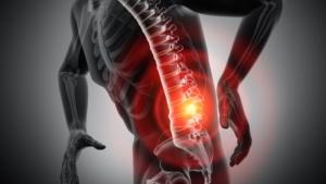 腰痛を筋膜リリースとストレッチで改善し、筋トレで予防しよう!