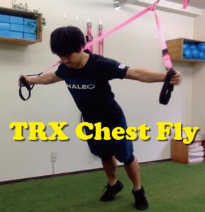 TRX Chest Flyで胸筋をしっかり鍛える!